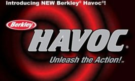 Havoc Baits Sick Fish colors at Monster!