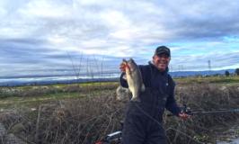 Delta Fishing Report by Mark Lassagne
