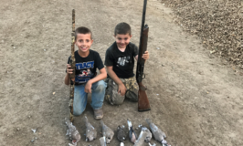 Dove Hunting Report by Chris Evola