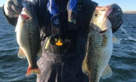 Lake Camanche Fishing Report by Chris Evola